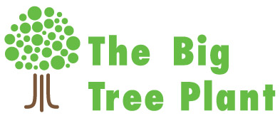 Voice on Civic Voice Is Supporting The Big Tree Plant  This Is A National