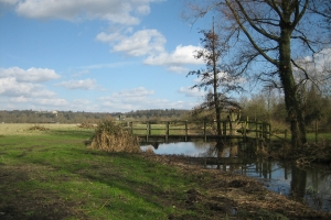 Wildbrook Common, National Trust